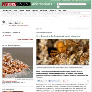 Spiegel Online über flügellose Kriegerprinzessinnen bei Acromyrmex (Nehring et al. 2012)